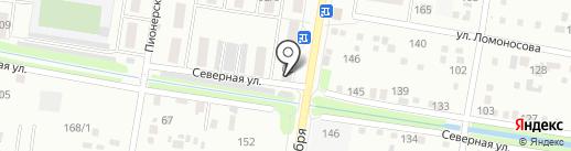Даша на карте Благовещенска