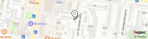 Бегемот на карте Благовещенска