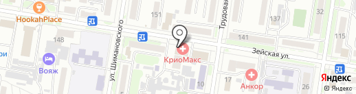 Продис-ДВ на карте Благовещенска