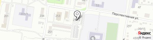 Умничка на карте Благовещенска