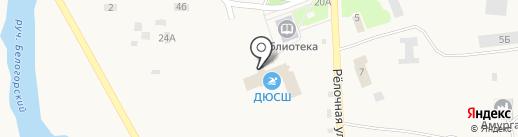 Амурская областная ДЮСШ на карте Белогорья
