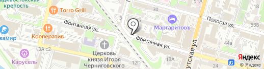 Доктор Квак на карте Владивостока