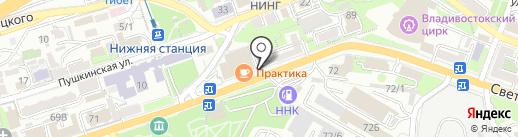 Снейк на карте Владивостока