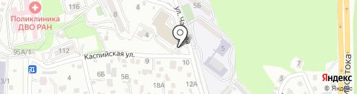 Чемпионика на карте Владивостока