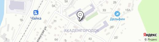 Dynamicweb ru на карте Владивостока