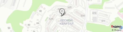 Синдикат на карте Владивостока