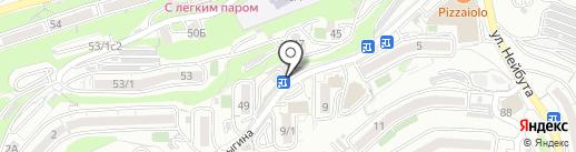 Бутоньерка на карте Владивостока