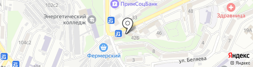 Bonjour на карте Владивостока