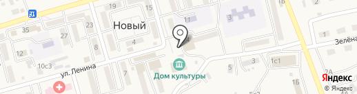 Кристина на карте Нового