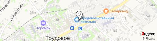 ПФК ДВ 25 на карте Трудового