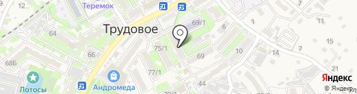 Платежный терминал, АКБ Приморье, ПАО на карте Трудового