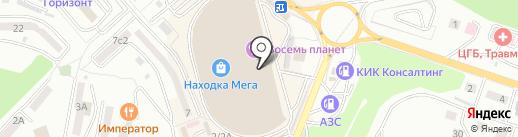 Цифровая мозаика на карте Находки