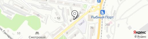 Титан на карте Находки
