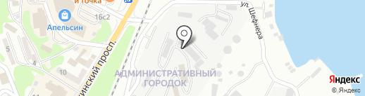 Имбирный лис на карте Находки
