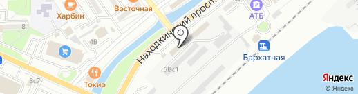 Ледосвет на карте Находки