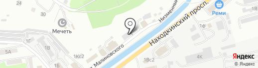 Айболит на карте Находки