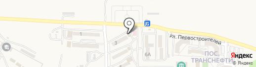 Чайка на карте Находки