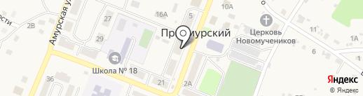 Светлана на карте Приамурского
