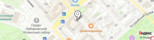 Сратэтика на карте Хабаровска