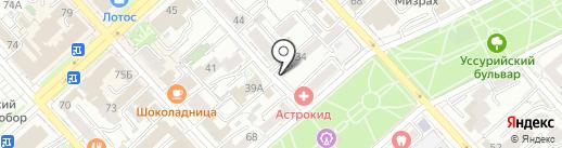 Ring на карте Хабаровска