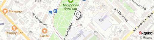 Бабочка на карте Хабаровска
