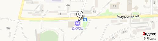 ДЮСШ на карте Амурска