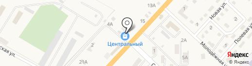 Центральный на карте Троицкого