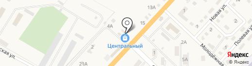 Фирма-Теди на карте Троицкого