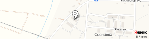 Визит на карте Сосновки