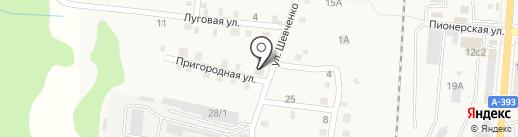 Магазин на Шевченко на карте Долинска