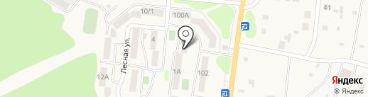 Березка на карте Елизово