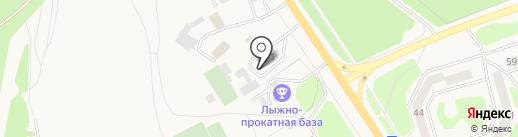Виктория на карте Елизово