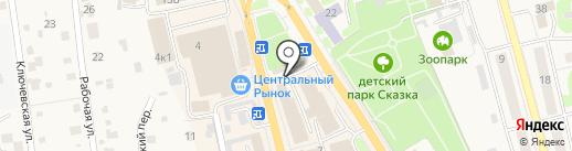 Доктор ЗОО на карте Елизово