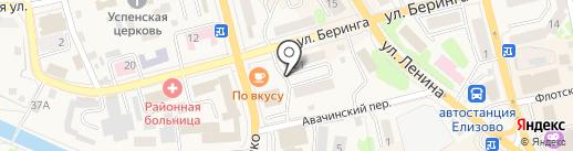 Международная полицейская ассоциация на карте Елизово