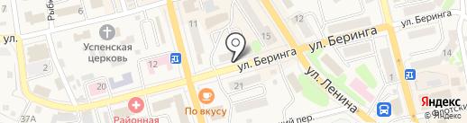 Бирюса на карте Елизово