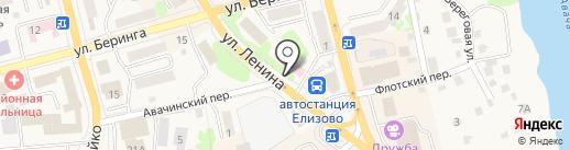 Детская поликлиника на карте Елизово