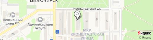 Птенец на карте Вилючинска