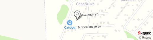 CATDOG на карте Елизово