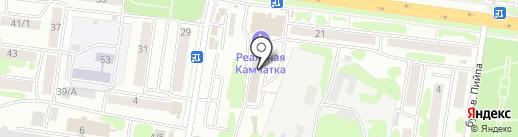 Альянс на карте Петропавловска-Камчатского