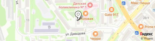 Widezone на карте Петропавловска-Камчатского