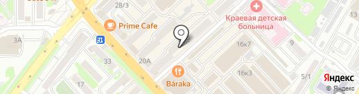 Золотая кисть на карте Петропавловска-Камчатского
