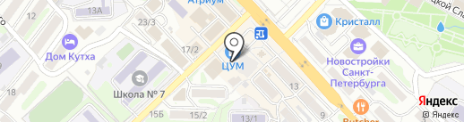 Марио на карте Петропавловска-Камчатского