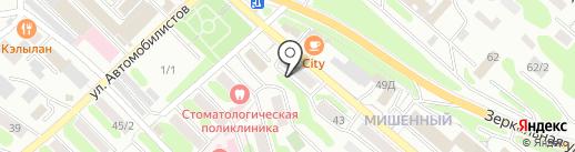 Витязь на карте Петропавловска-Камчатского