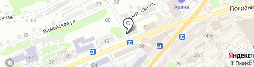 Паутина на карте Петропавловска-Камчатского
