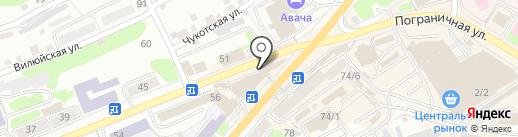 Гусь на карте Петропавловска-Камчатского