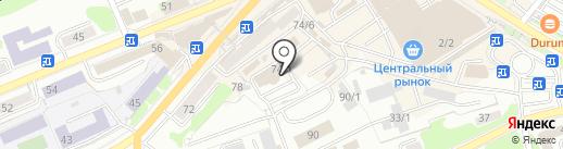 ДАЛЬСНАБСБЫТ на карте Петропавловска-Камчатского