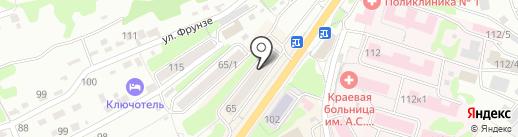 Хвостатый модник на карте Петропавловска-Камчатского