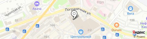 Целлофановый слон на карте Петропавловска-Камчатского