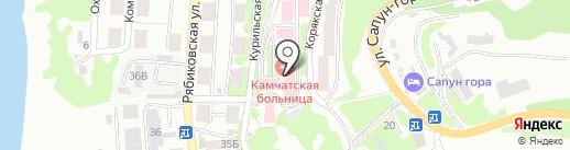 Дальневосточный окружной медицинский центр на карте Петропавловска-Камчатского
