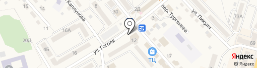 Алоэ и Авиценна на карте Балтийска